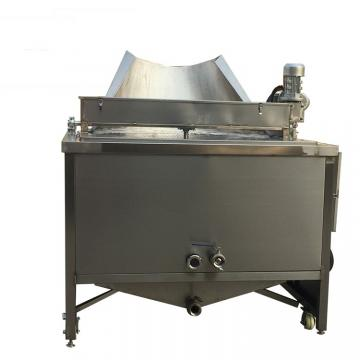 Commercial Kitchen 2 Tanks Stainless Steel Gas Deep Fryer (GRT-G20L)