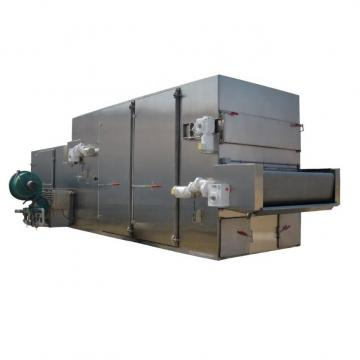 35 M2 Vacuum Freeze Drying Machine for Vegetable