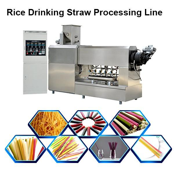 Fast speed PLA biodegradable plastic straw automatic drinking straw making machine for bar #1 image