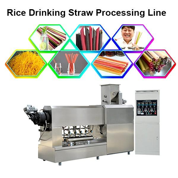 Wheat Drinking Straw Machine / Rice Drink Straw Line Machine Price #1 image
