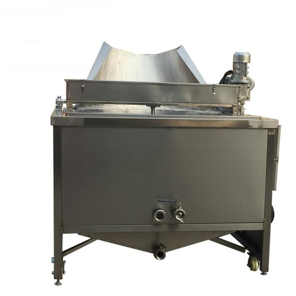 Commercial Kitchen 2 Tanks Stainless Steel Gas Deep Fryer (GRT-G20L) #1 image