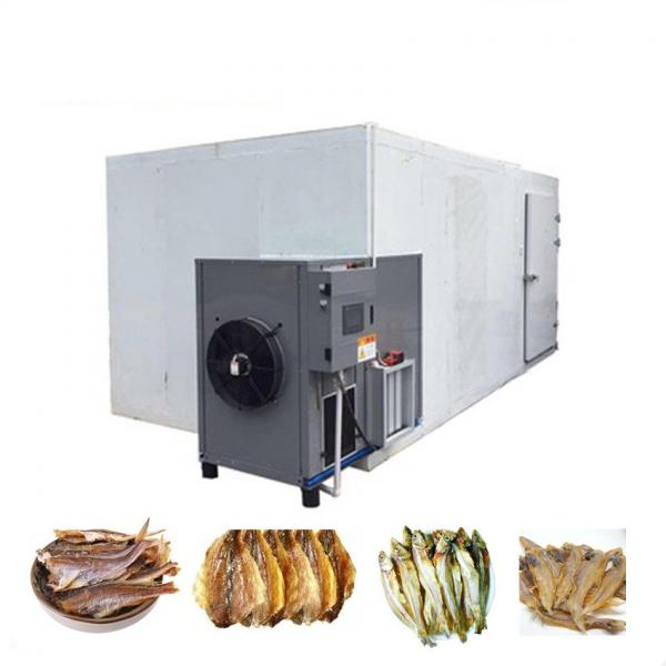 Automatic Small Fish Milk Dry Dog Pet Food Honey Tomato Fruit Vegetable Food Freeze Drying Processing Making Dehydrator Machine Factory Price #1 image