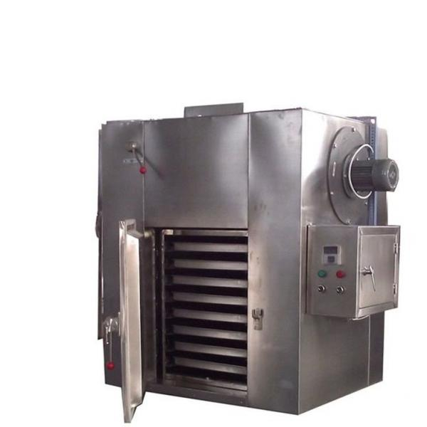 Widely Used Vegetables Dehydrator Machine for Onion/ Chill Drying Machine #1 image