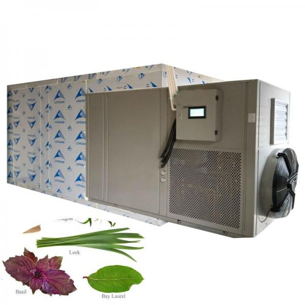 Agricultural Machinery Fruit/ Cherry Dehydrator/ Apple Drying Machine #1 image