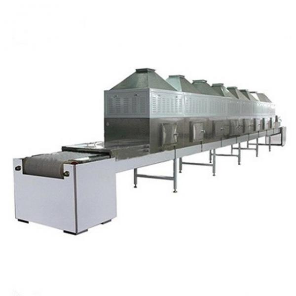 Continuous Vegetable Snacks Hot Air Dryer Tunnel Drying Machine #1 image