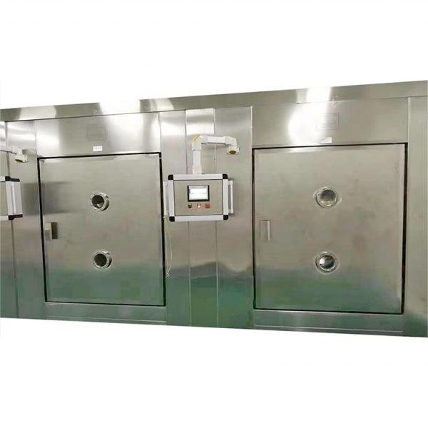Large Industrial Continuous Tunnel Microwave Dryer #3 image