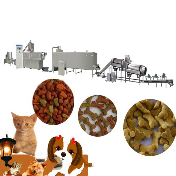 Dry Nutritional Dog Food Machine Pet Food Extrusion Machine Extruder Production Line #1 image
